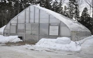 Как называется место где зимой выращивают овощи